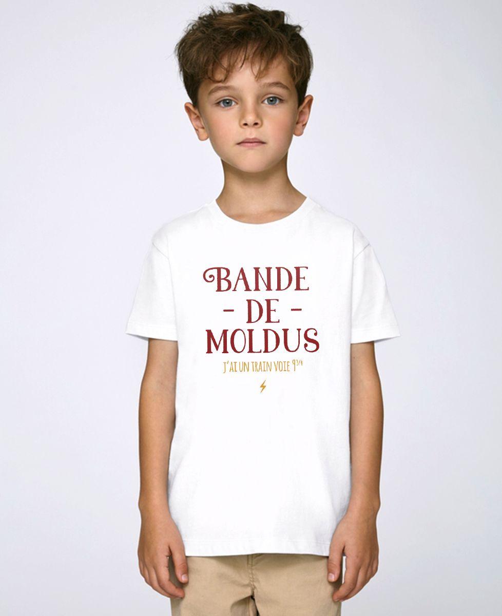 T-Shirt enfant Bande de moldus
