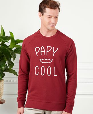 Sweatshirt homme Papy cool