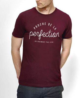 T-Shirt homme La perfection
